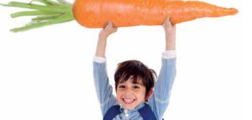8 ključnih elementov zdrave prehrane